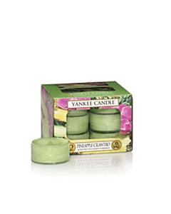 Yankee Candle Pineapple Cilantro Tealights