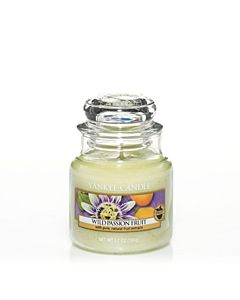 Yankee Candle Wild Passion Fruit Small Jar