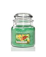 Yankee Candle Beautiful Day Medium Jar