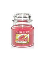 Yankee Candle Pink Dragon Fruit Medium Jar