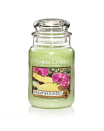 Yankee Candle Pineapple Cilantro Large Jar