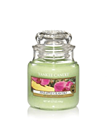 Yankee Candle Pineapple Cilantro Small Jar