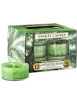 Yankee Candles Tealights Under the Palms