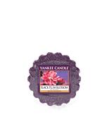 Yankee Candle Black Plum Blossom Doftvax