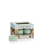 Yankee Candle Coastal Living Tealights