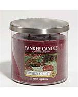 Yankee Candle Cranberry Chutney 2-vekad Tumbler 354g