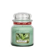 Yankee Candle Aloe Water Medium Jar